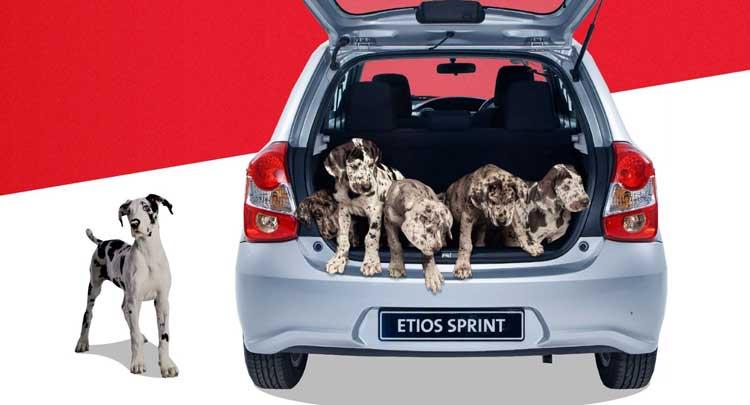 TNew Toyota Etios Models